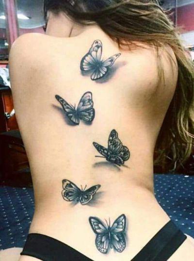 borboleta costas